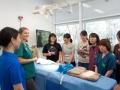 1 カランビン野生動物病院実習