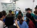 13 カランビン野生動物病院実習