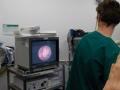 14 カランビン野生動物病院実習