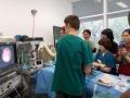15 カランビン野生動物病院実習