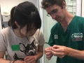 22 カランビン野生動物病院実習