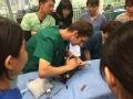 23 カランビン野生動物病院実習