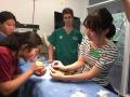 28 カランビン野生動物病院実習