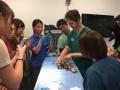 29 カランビン野生動物病院実習