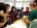 3 カランビン野生動物病院実習