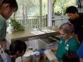 30 カランビン野生動物病院実習