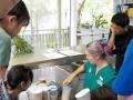 31 カランビン野生動物病院実習