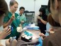5 カランビン野生動物病院実習