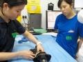 53 カランビン野生動物病院実習