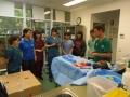 69 カランビン野生動物病院実習