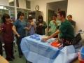 72 カランビン野生動物病院実習