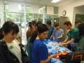 74 カランビン野生動物病院実習