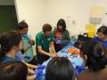 75 カランビン野生動物病院実習