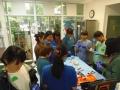 79 カランビン野生動物病院実習