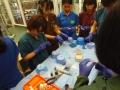 83 カランビン野生動物病院実習