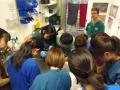 86 カランビン野生動物病院実習