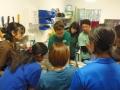 90 カランビン野生動物病院実習
