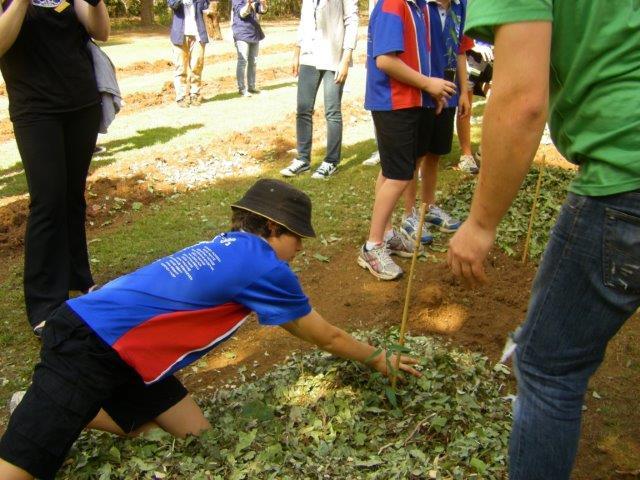 planting-primary-school-kids