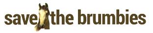 save the brumbiesSTB