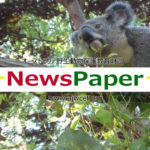 AJWCEF メディア掲載 新聞